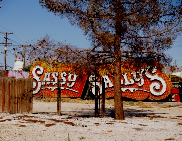 Neon Sally Sign by Sheree Zielke