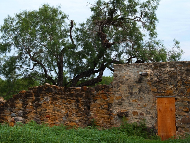 Mission Espada Wall by Sheree Zielke