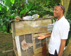 Lewis, our terrific taxi driver on St. Lucia, shows off his chicken coop.